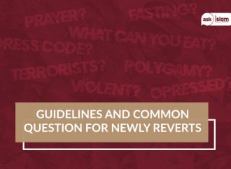 Guidelines and common question for newly reverts